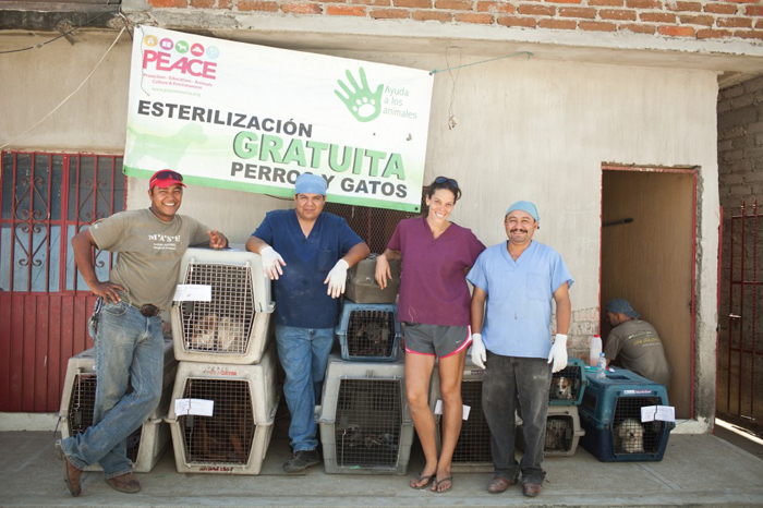 Peace Mexico offers Free Spay and Neuter Pet Clinics in Mexico